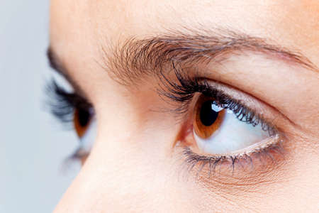 Close up of a females brown eyes photo