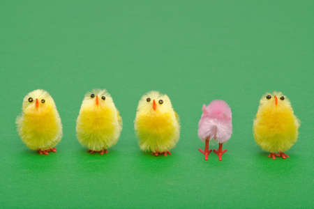 out of order: A line of easter chicks, one facing a different way to the others.