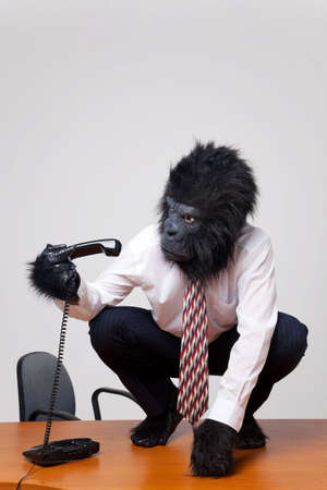 abstract gorilla: Abstract image of a gorilla in business attire sat on a desk trying to work out how to use the phone.