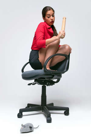 Woman who doesnt like mice crouched on an office chair holding a rolling pin as a clockwork mouse runs around on the floor. photo