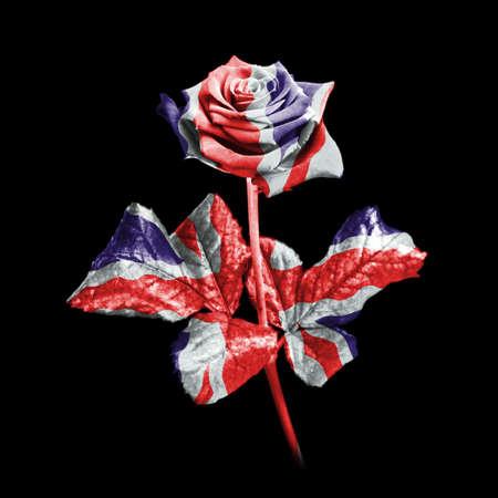 bandera inglesa: Una �nica rosa contra un fondo negro digitalmente mejorado en los colores de la bandera de la bandera. Foto de archivo