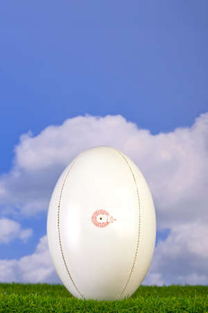 Photo of a rugby ball teed up on grass with sky background. photo