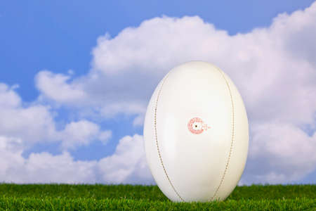 rugby ball: Photo of a rugby ball teed up on grass with sky background.