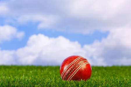 cricket ball: Photo of a cricket ball on grass with sky background.