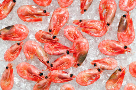 Photo of fresh whole prawns or shrimps on crushed ice. photo