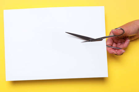 hand cutting through a blank piece of white paper with chrome scissors on a yellow background, add your own image or text. photo