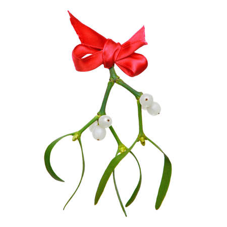 Photo of Mistletoe with berries and a red ribbon isolated on a white background.
