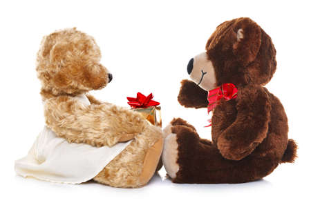 cuddly: Photo of a boy teddy bear giving a girl teddy a gift, isolated on a white background. The Teddys are generic and are not brand name bears. Stock Photo