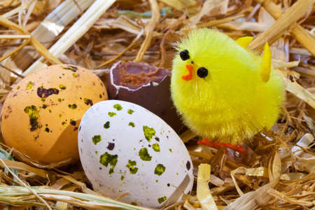 Photo of a toy easter chick and chocolate candy covered eggs in a nest. photo