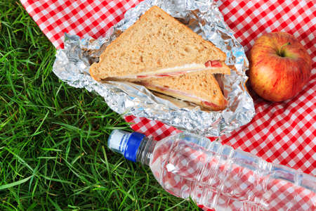 Photo of a picnic lunch consisting of a sandwich, an apple and a bottle of mineral water all on a red checkered cloth. Stock Photo - 12962919