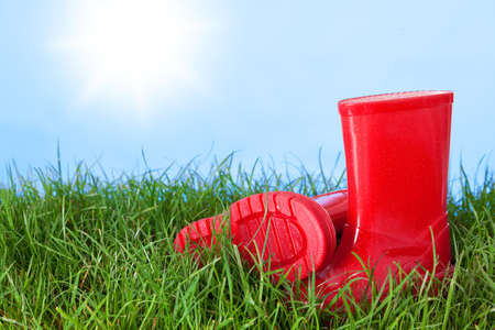 Photo of a childs wellington boots on grass outside on a sunny day Stock Photo - 13203172