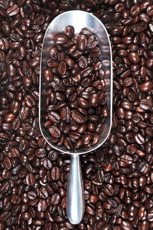 Photo of a metal scoop with roasted arabica and robusta coffee beans mix. Stock Photo - 13263425