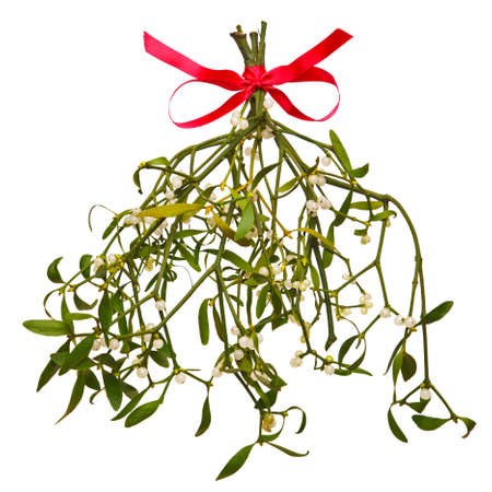 A bunch of mistletoe with a red bow, isolated on a white background.