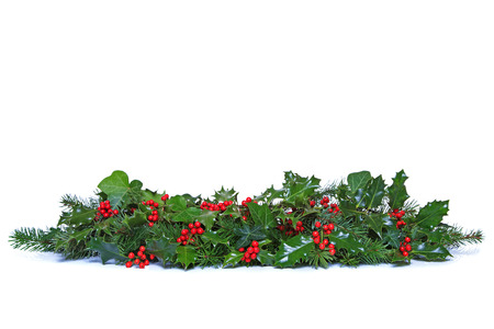 A traditional Christmas garland made from fresh holly with red berries, green ivy leaves and sprigs of conifer spruce. Isolated on a white background. Stock Photo
