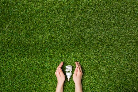 ahorro energetico: Manos que guardan lámpara ahorro de energía del eco sobre hierba
