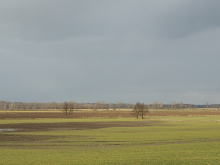 overcast: Flat agricultural landscape with gray overcast sky Stock Photo