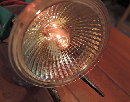 barely: Halogen light bulb barely lit in the workshop