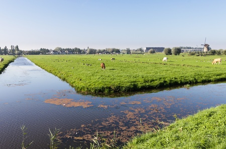 Farm fields in Holland photo