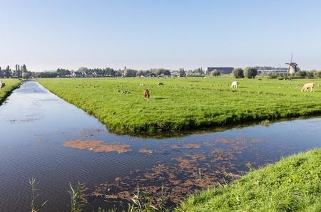 Farm fields in Holland photo