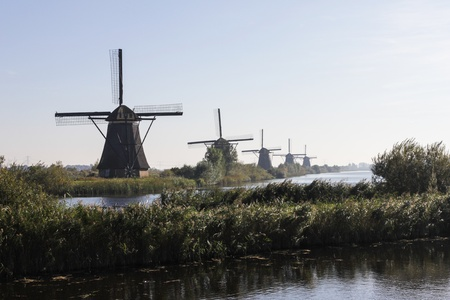 Line of windmills photo