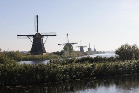 Line of windmills photo
