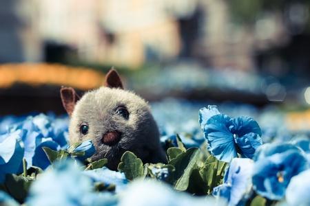 furry stuff: Toy flowers