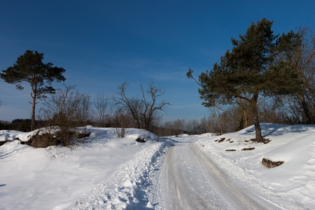 Route d'hiver photo