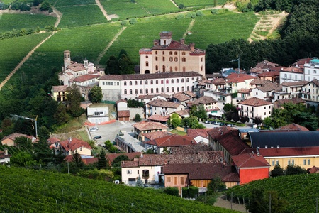 Vineyard on the hills around Barolo village in Piedmont province in Italy photo
