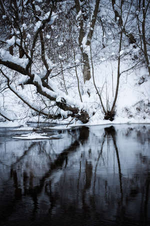 Winter forest river under the snow photo