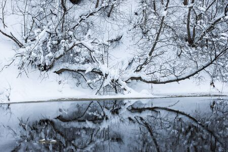Winter forest river under the snow Stock Photo - 13286524