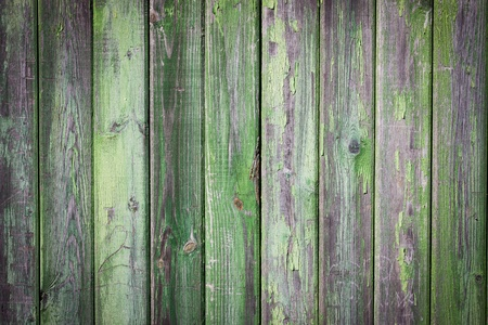 Grunge green painted wooden plank  photo