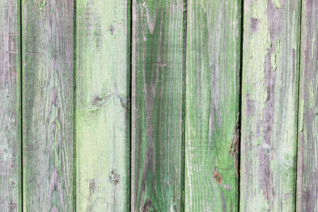Grunge green painted wooden wall  photo
