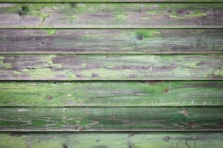 Green old painted wooden background Standard-Bild