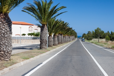 Traveling by the car to the beach of Costa Dorado, Spain. With palms photo