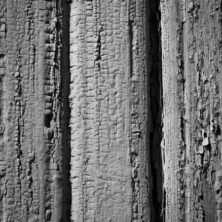 old gray wooden plank wall of a house  Square format Stock Photo - 15805097