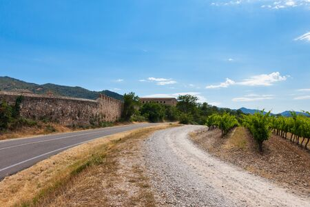 vineyard in spain with beautiful agricultural landscape near old monastery photo
