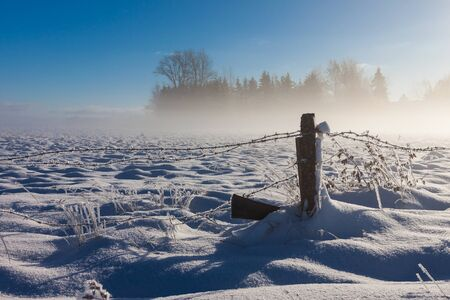 Barbed wire fence with snow covered ground and fog Stock Photo - 16032801