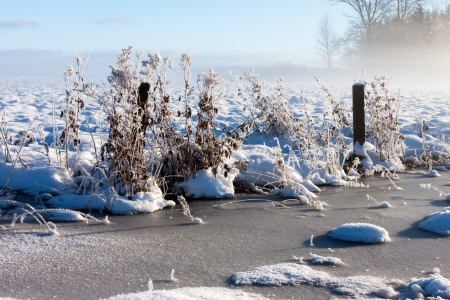 snowy fields with fog near farm Stock Photo - 16513639