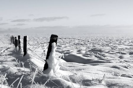 Barbed wire fence with snow covered ground and fog Stock Photo - 16789740