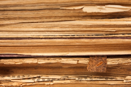 Old books paper pages as a background Stock Photo - 16984319