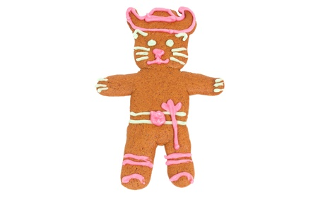 Puss in Boots gingerbread cookie isolated over white background