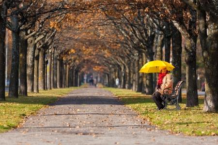 woman in the fall park with yello umbrella Standard-Bild