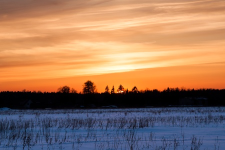 Winter landscape. Composition of nature with sunset photo