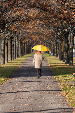 yello: Elderly woman in the fall park with yello umbrella Stock Photo