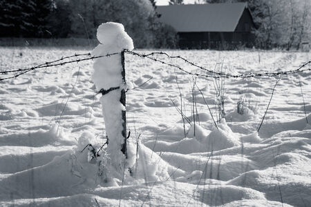 Barbed wire fence with snow  photo