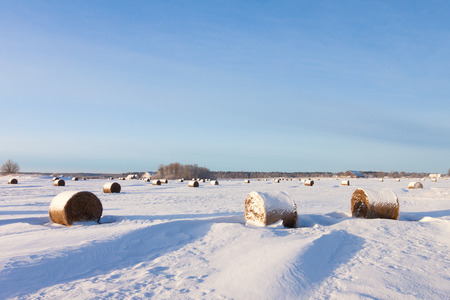 Bales of hay laying in the snow on farm field photo