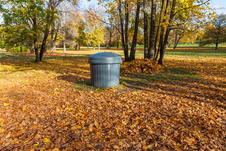 Garbage can in autumn park with leaves photo