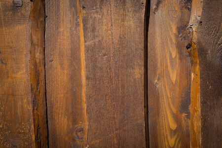 quercus robur: old, grunge wooden wall used as background texture