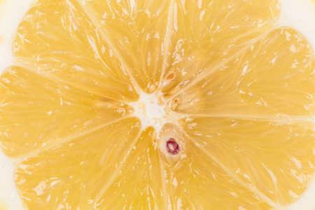 sappy: Organic lemon slice on a white background