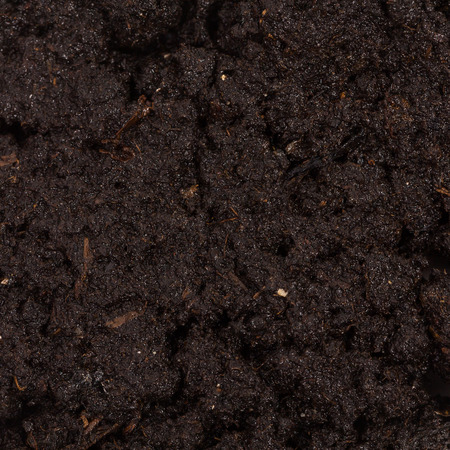 Digging The Soil Fertile Stock Photos Pictures Royalty Free